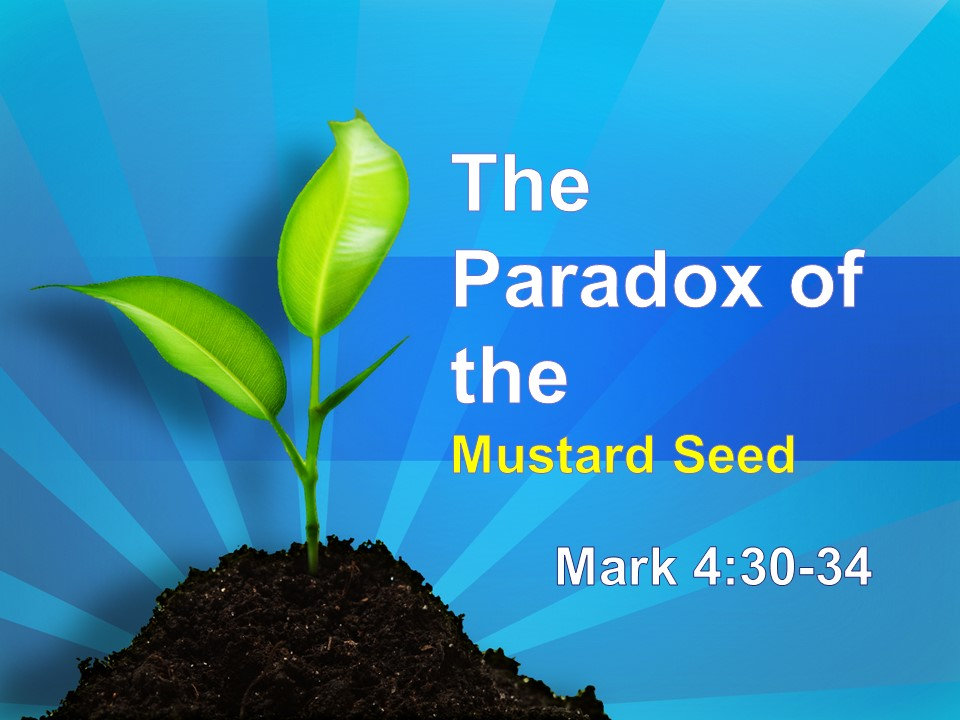 The Paradox of the Mustard Seed