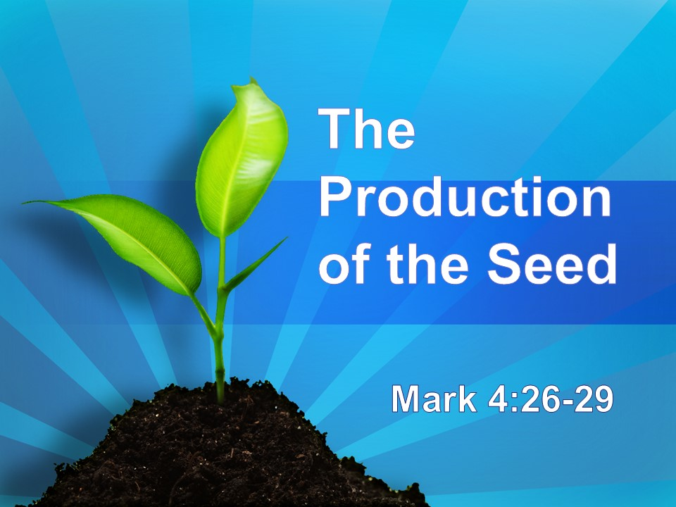 The Production of the Seed